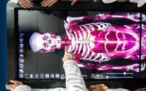 Anatomage virtual dissection table makes it easier for Shenandoah health professions student to understand the body.